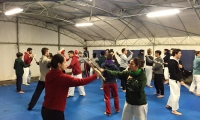 stage-invernale-judo-firenze-2015-014